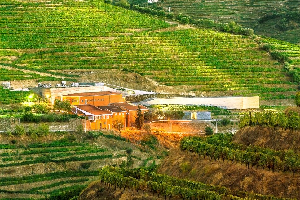 Der Weinkeller der Quinta