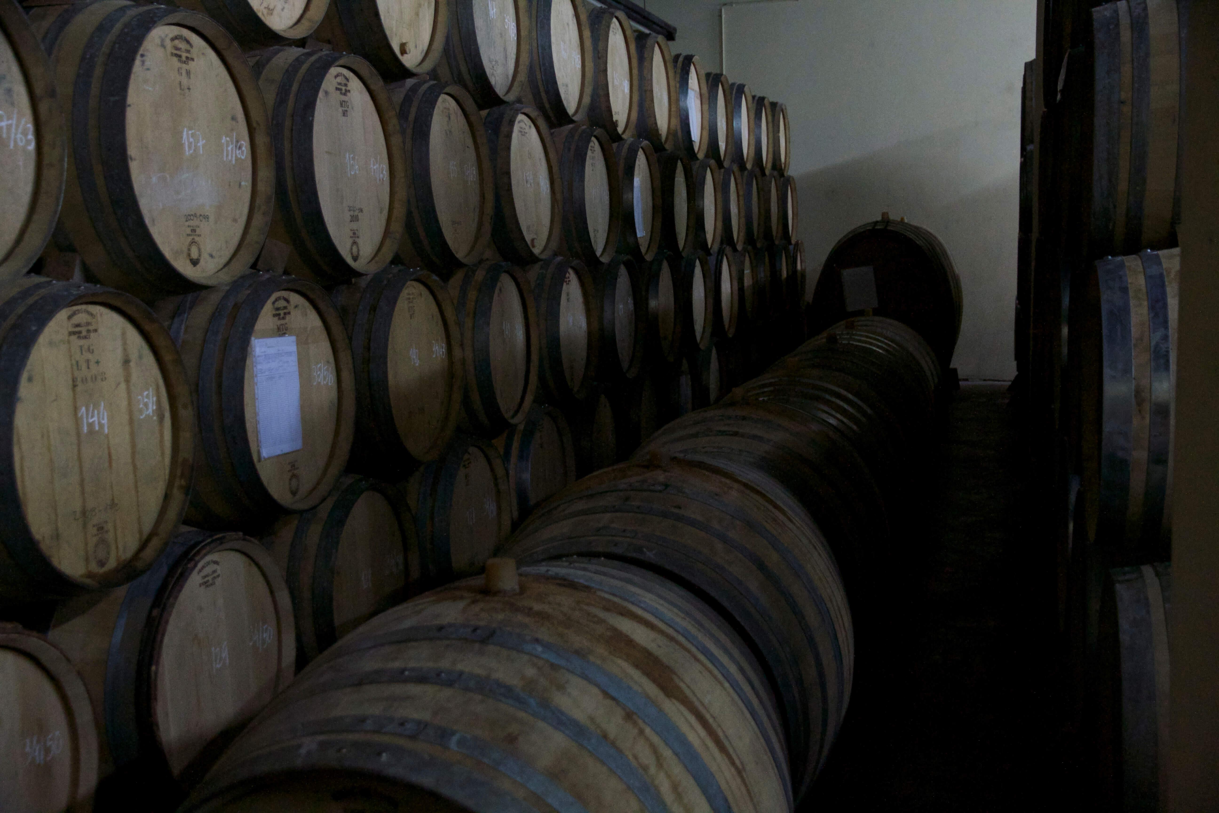 Douro Weinkeller Niepoort Portwein
