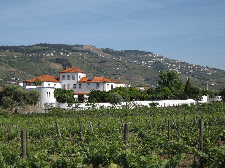 Weingut Quinta de Tourais zwischen Peso da Regua und Lamego