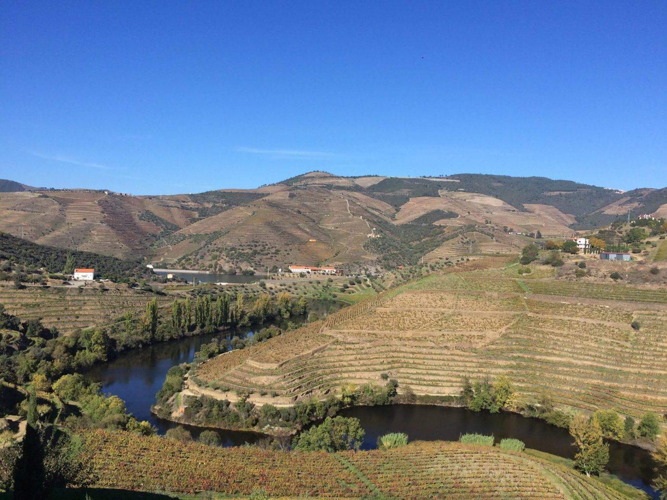 Portugal Douro Flussfahrt Weinberge