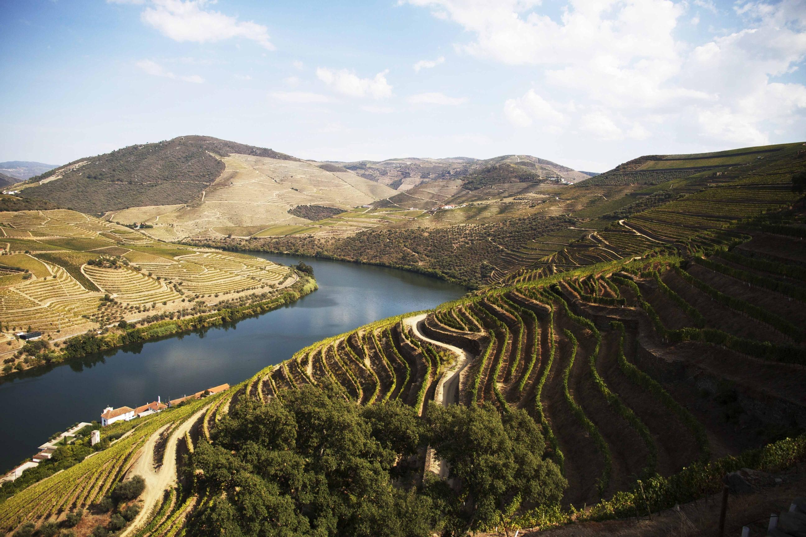 Offen für einen Geheimtipp? Ein beeindruckender Ausblick auf das Douro-Tal