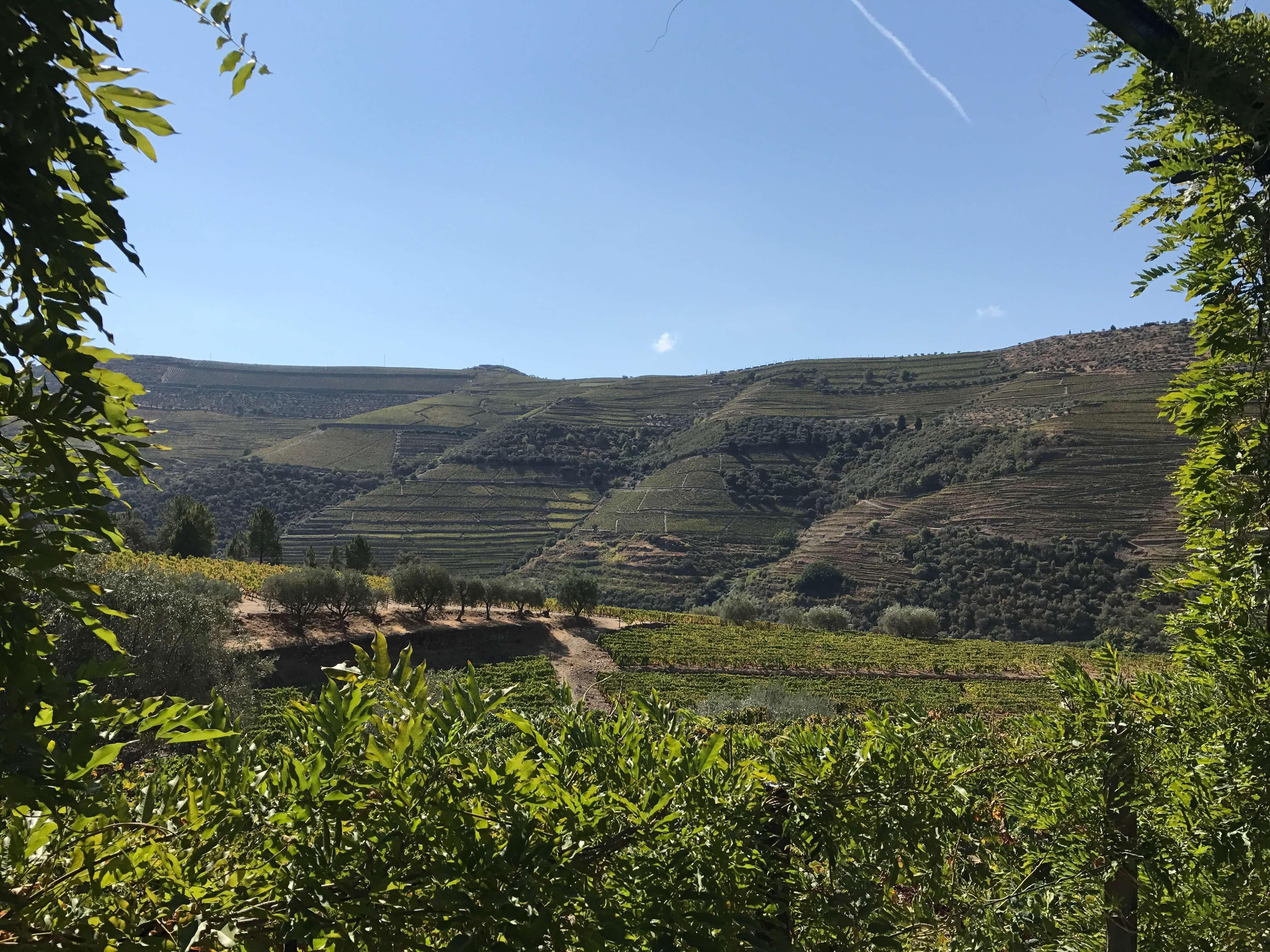 Ausflugsziele im Douro-Tal