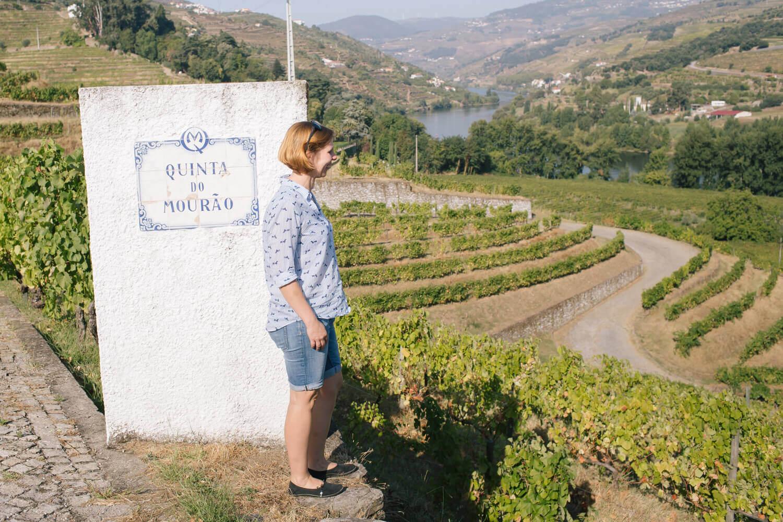 Blick von der Quinta do Mourão auf den Douro-Fluss und die Weinberge im Douro-Tal