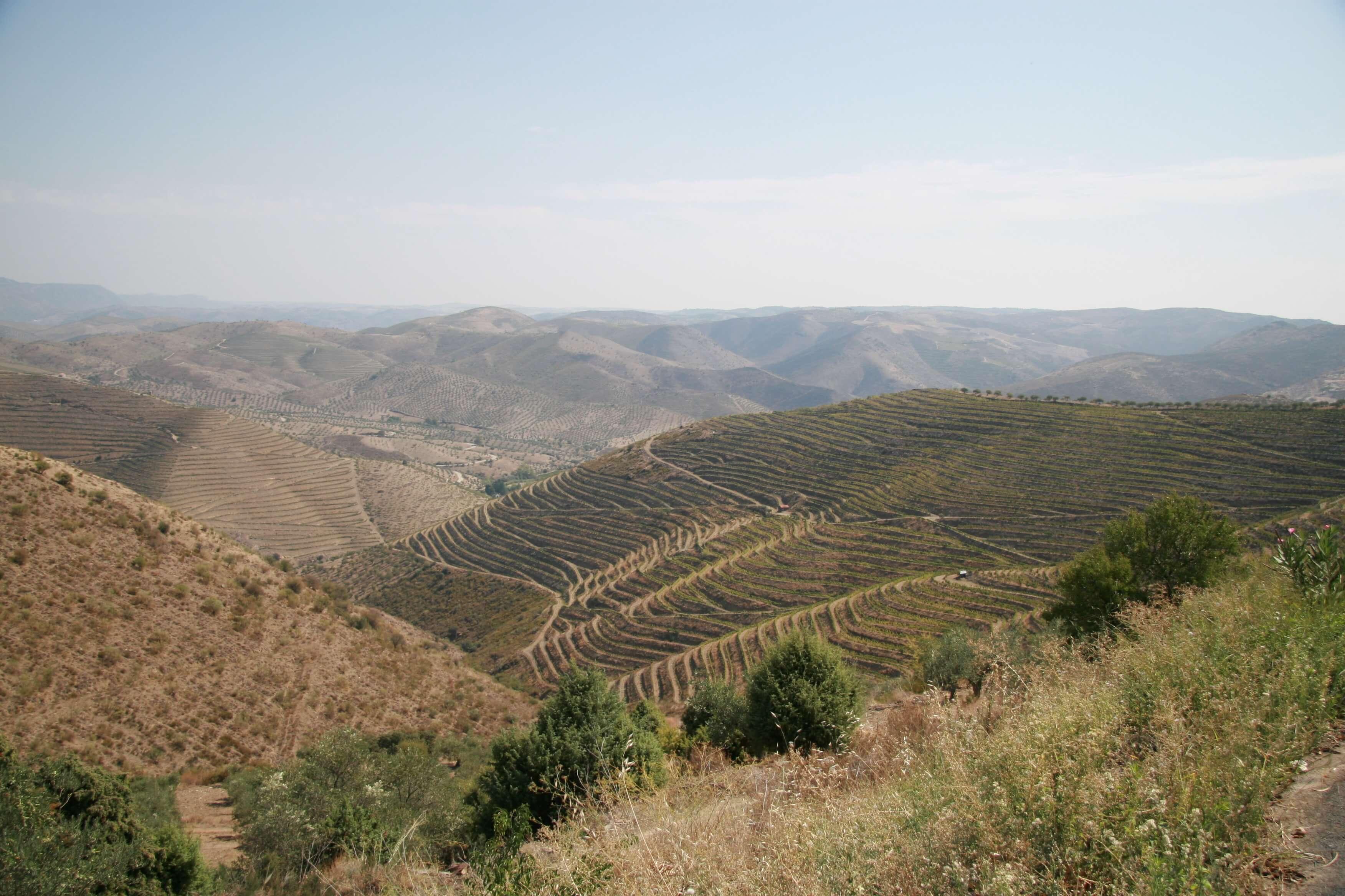 Das Douro-Tal im Norden Portugals
